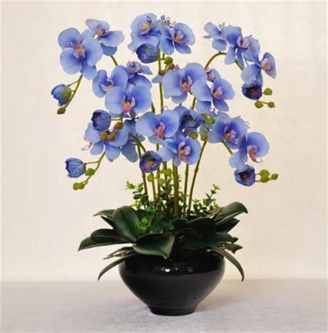 fiori di ceramica acquista all ingrosso orchidea vasi di ceramica da