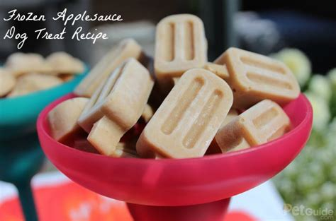 can dogs applesauce can you freeze applesauce paperwingrvice web fc2