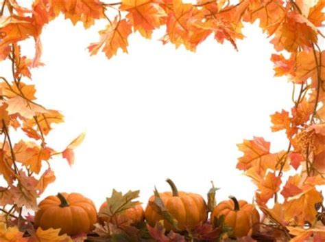wallpaper daun merambat daun musim gugur labu gambar frame hd gambar musim gugur