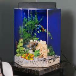 Aquascape Design Software 45 Gallon Hex Fish Tank Http Forumgarden Com Forums