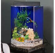 Clear For Life Hexagon Aquarium Fish Tank Aquariums At Hayneedle