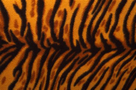 pattern tiger ai tiger pattern free stock photo public domain pictures