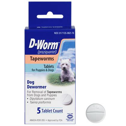 tapeworm treatment tapeworms in dogs related keywords tapeworms in dogs keywords keywordsking