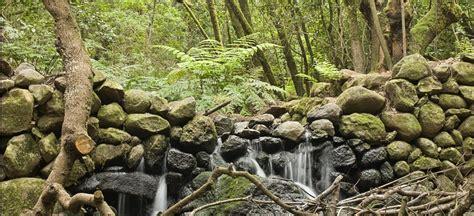 originelle wandlen contadero el cedro la gomera wanderwege