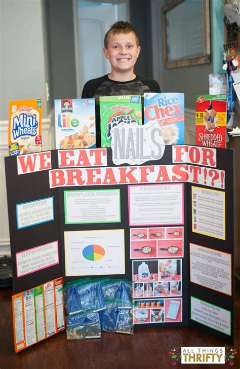 best science projects place elementary school science fair project