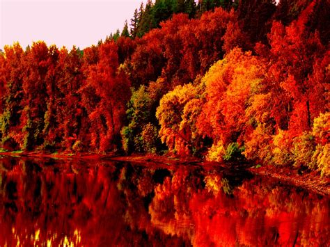 fall backgrounds autumn nature wallpapers hd pictures one hd wallpaper