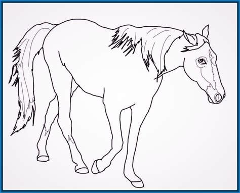 imagenes de animales bonitos para dibujar dibujos faciles para dibujar de animales hermosos