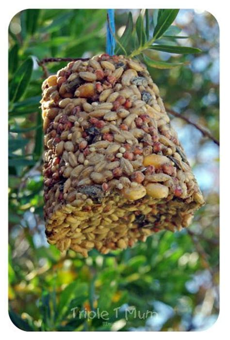 homemade bird feeder recipe homemade early spring and