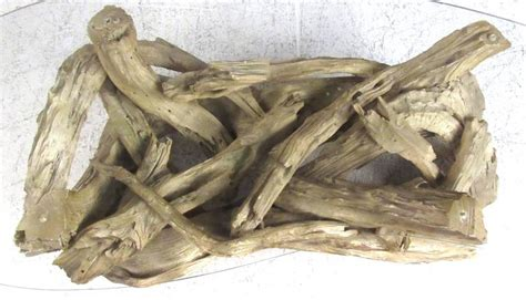 Driftwood Table L Mid Century Driftwood Coffee Table For Sale At 1stdibs