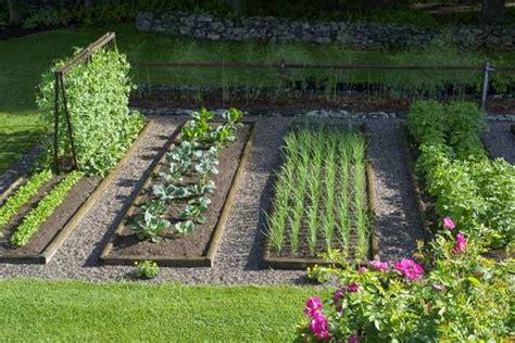 merawat tanaman  aneka tanaman hias yuk menanam