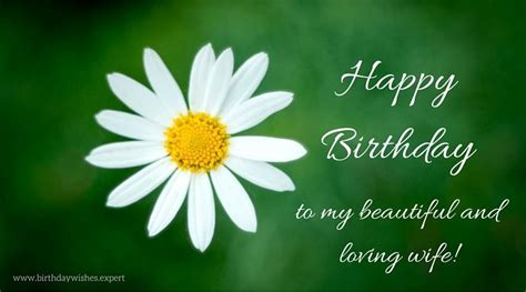 Ee  Birthday Ee   Wishes  Ee  Wife Ee   Would Appreciate