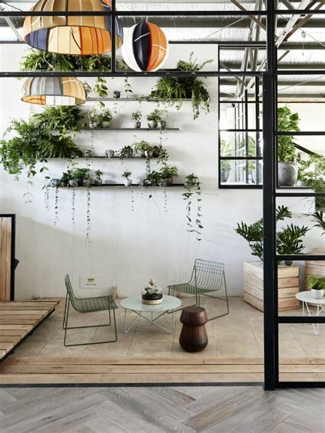 große pflanzen innen chestha bunt idee kronleuchter