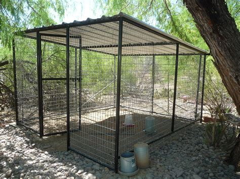 Backyard Kennels by Large House Pet Outdoor Kennel Cat Puppy Weather