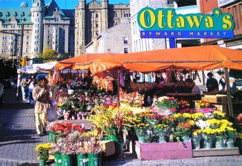 top trends in ottawa s housing market ottawa citizen designer s travel guide ottawa home trends magazine