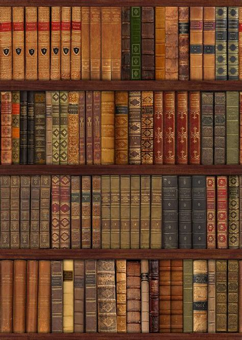 library bookcase books wall mural decor photo wallpaper