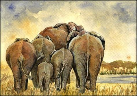 elephant herd safari africa color animal wildlife