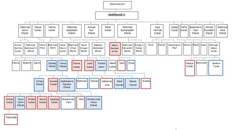 Ottoman Dynasty Family Tree Osmanoğlu Family