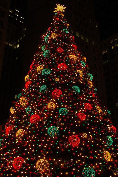 christmas in chicago christmas time everywhere pinterest