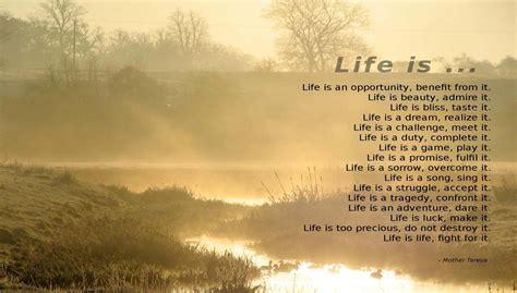 Inspirational Quotes About Teresa Quotes Inspirational Quotesgram