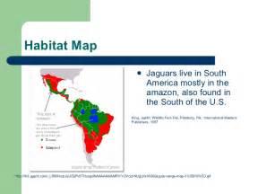 Map Of Jaguar Habitat Image Gallery Jaguar Habitat Map