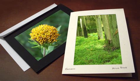 make and sell greeting cards how to sell your nature photography studio style