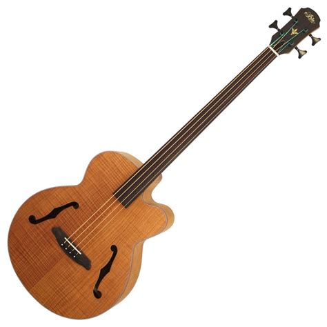 acoustic bass feb fretless electro acoustic bass guitar