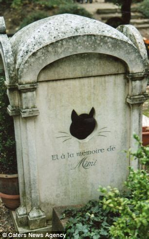 quotes  pet cemetery quotesgram