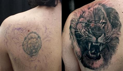 lion cover up tattoo cover up improving your results chronic ink