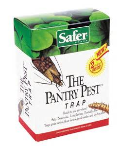 safer pantry pest moth trap