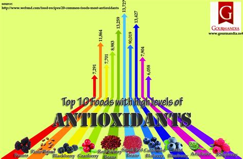 top 10 foods top 10 foods with high levels of antioxidants visual ly