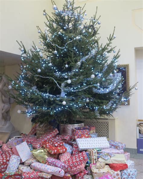 christmas tree collection in merton collection of