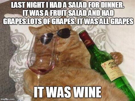 Fruit Salad For Dinner Meme - winecat imgflip