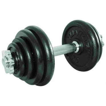Dumbell Kettler 2 Set 20 Kg dumbbells order find it at fitt24