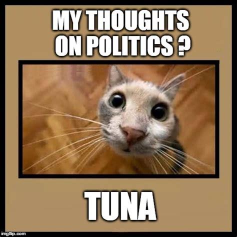 Tuna Meme - tuna imgflip