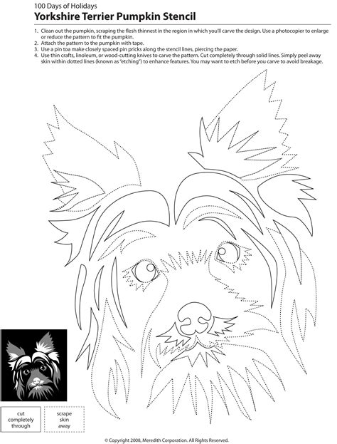 yorkie pumpkin stencil 22 free pumpkin carving stencils breed specific treats happen