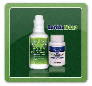 Obat Maag Herbal Yang Uh obat maag solusi penyembuhan maag dengan produk synergy