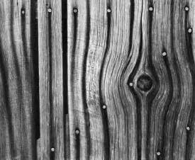 black and white wood nail stained wood fine art photography black and white prints