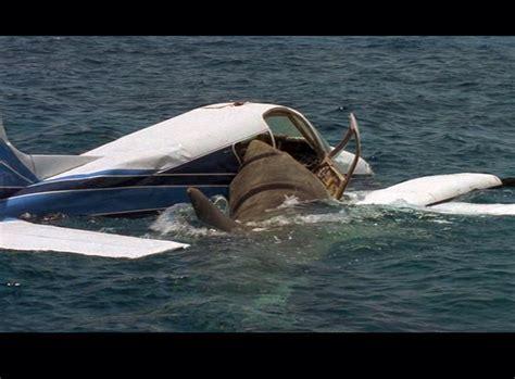 jaws dragon boat christmas tv history jaws the revenge 1987