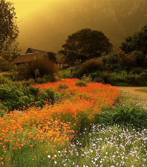 Kirstenbosch Botanical Garden Kirstenbosch National Botanical Garden Places