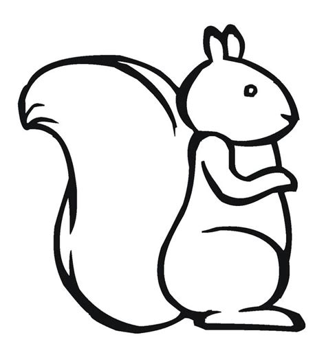 red squirrel coloring page 44 best squirrel images on pinterest red squirrel