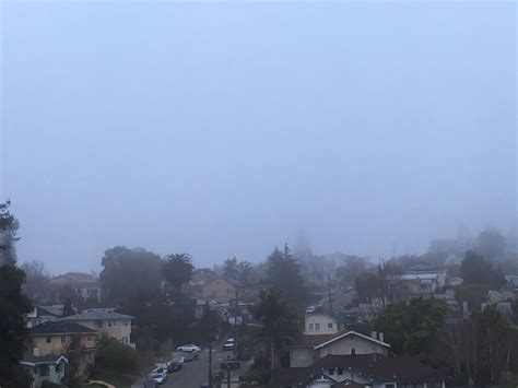 Bay Area Of The Week 34 by Fog Blankets The Bay Area Ahead Of Steady Into Next