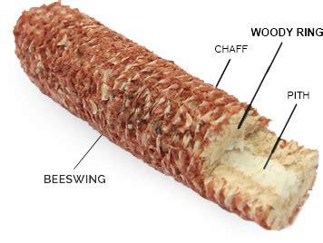 why corn cob? best cob