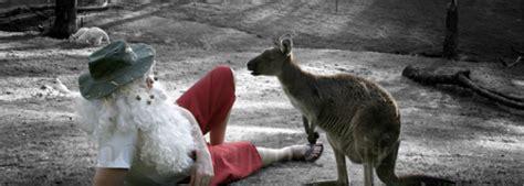 christmas traditions in australia facts オーストラリア ライフスタイル ビジネス研究所 クリスマス in オーストラリア mewisemagic net