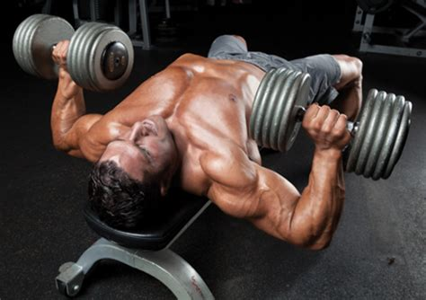 how to perform a bench press how to do the dumbbell bench press muscle performance