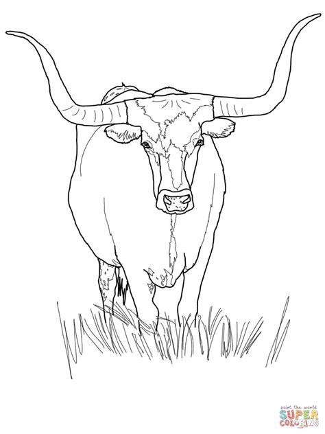 301 Moved Permanently Longhorns Coloring Pages