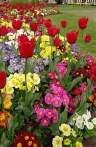 spring garden ideas spring flower garden ideas garden ideas pinterest