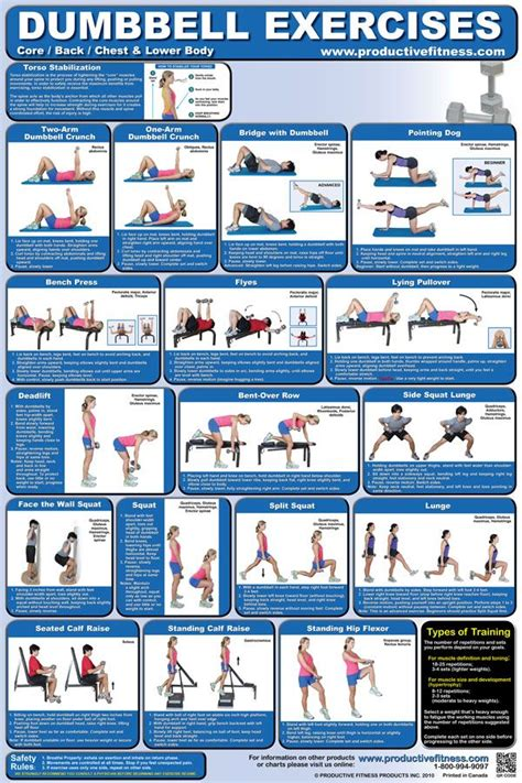 bench and dumbbell workout best 25 bench press with weights ideas on pinterest