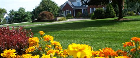 grass roots landscaping landscaping new fairfield ct grass roots inc