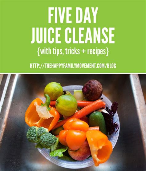 14 Day Juice Detox Diet Plan by Best 25 5 Day Juice Cleanse Ideas On 7 Day