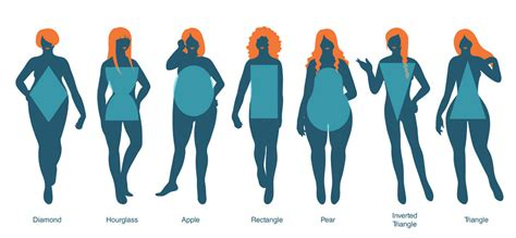 body types and shapes how waist trainers can accentuate your body type omorfio